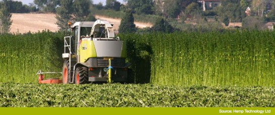 European_Harvest-715x300